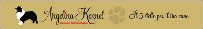 Logo Angelina Kennel